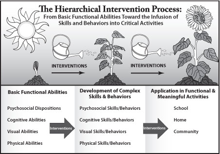 The Hierarchical Intervention Process