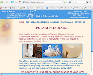 Polarity In Maine home page design